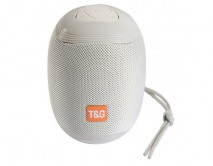 Колонка T&G 529 (серый)
